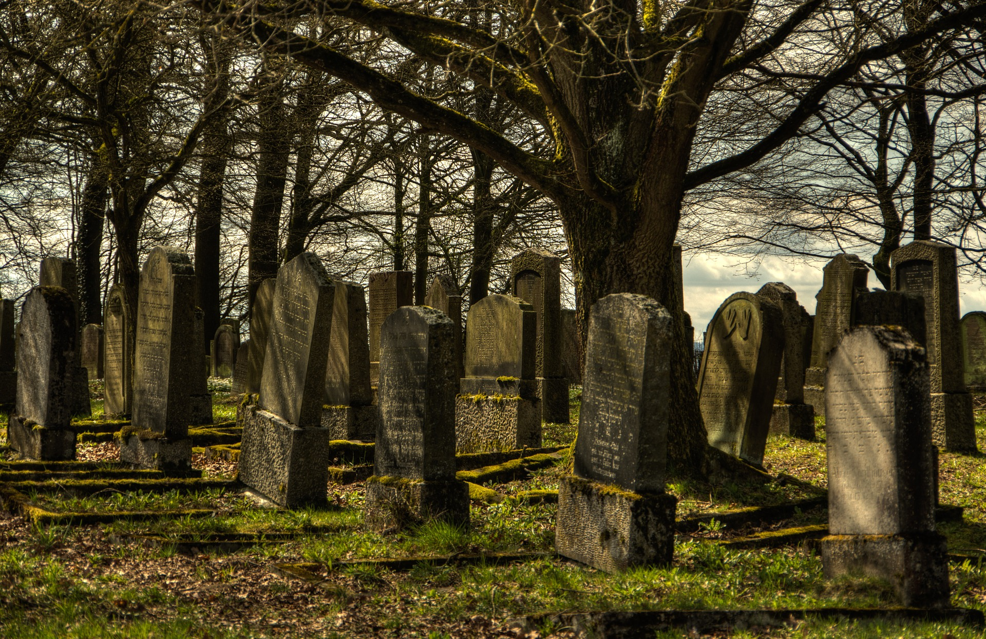 Changes to Cemetery opening hours in preparation for Christmas