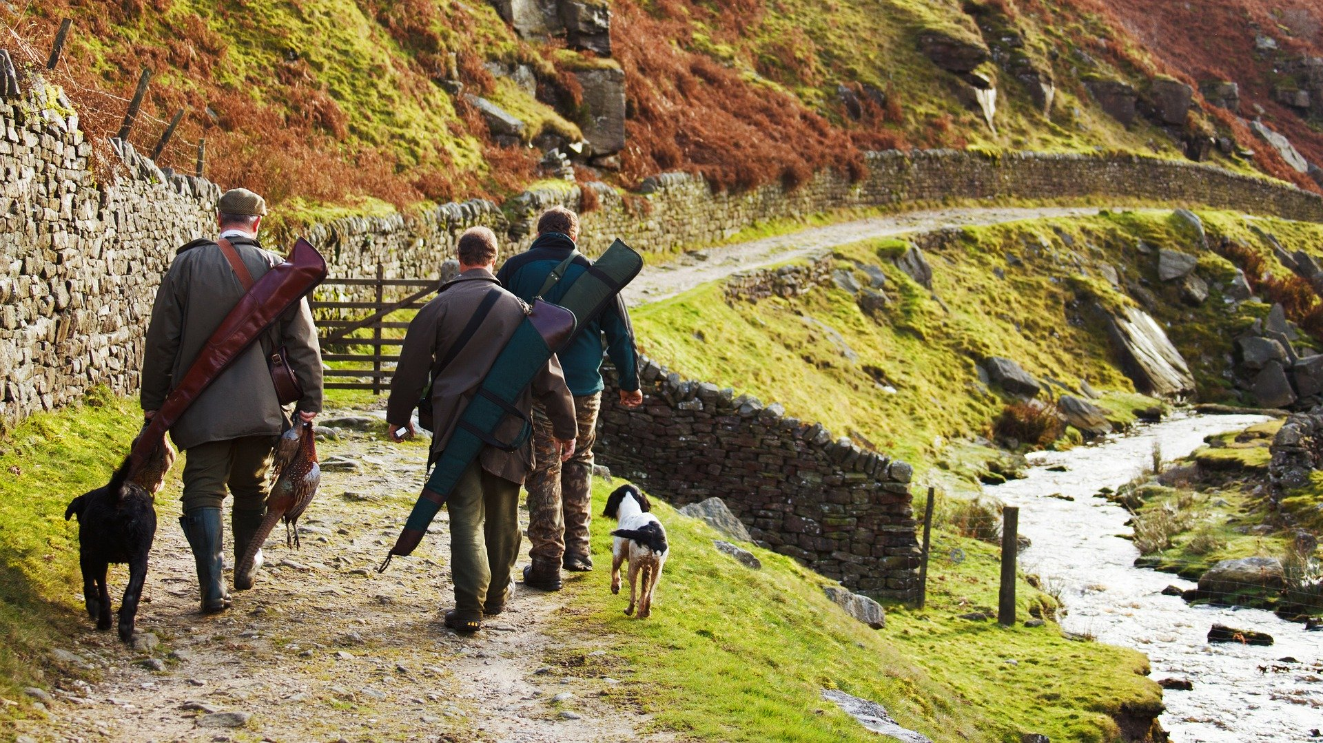 Hunting in England exempt from 'rule of six' Covid-19 restrictions
