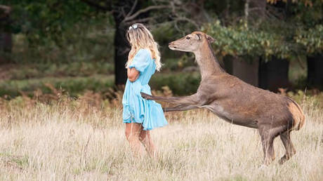 Wild deer attacks selfie-seeking woman in London park after she got too close in bid for perfect picture